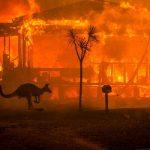 philanthropie crise climatique