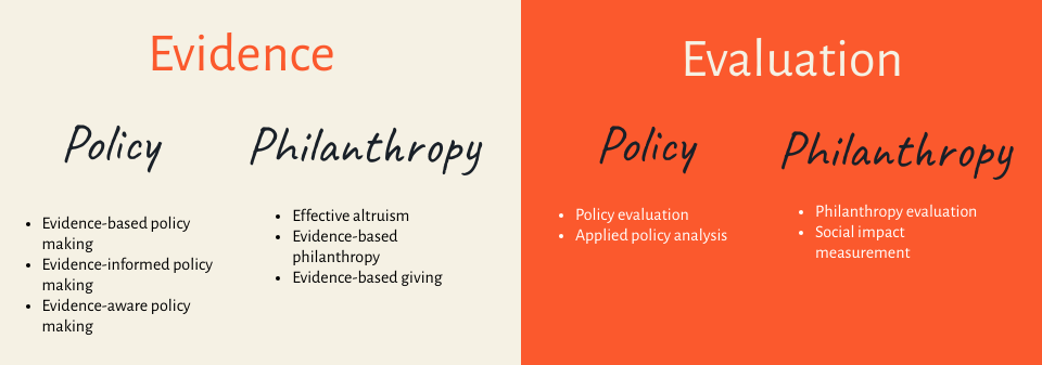 Policy Making Evaluation and Effective Altruism