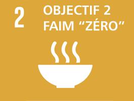 Fondations Faim Zéro Montréal