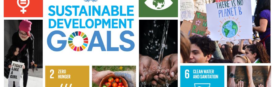 Philanthropy and Sustainable Development Goals