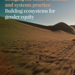 Bridging the fields of feminist and systems practice