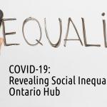 COVID-19 Social Inequalities